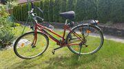 Damen Trekkingbike KTM Veneto