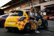 Suzuki Swift Sport 1 6