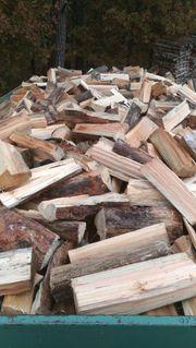 Brennholz Aktion 5 Ster für