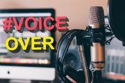 VOICE - OVER Artist - ENGLISCH RUMÄNISCH