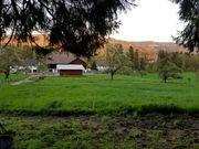 Offenstall Paddock Trail Aktivstall Pferdelaufstall