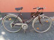 5 Fahrräder Konvolut zu verkaufen