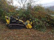 Forstmulchen Baufeldräumung Grundstücksrodung