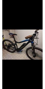 Ebike Haibike Bosch Fahrrad