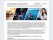 Senior Manager Sales DACH m