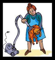 Suche freundliche gute Putzfrau
