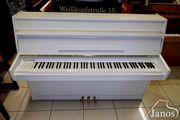 Calisia Mod Nocturn 105 Klavier