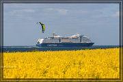 Weibl Reisebegleitung nach Skandinavien gesucht