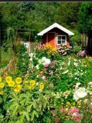 SUCHE Gartengrundstück Kleingarten Schrebergarten Freizeitgrundstück