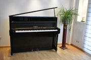 Klavier Steingräber Söhne Mod 116