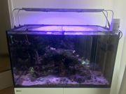 Verkaufe Red Sea Reefer 250