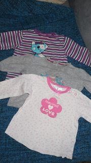 Langarmshirts 3er Set pink lila