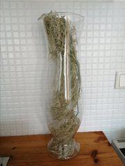 hohe Vase