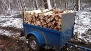 Brennholz Nadelholz ofenfertig inkl Lieferung