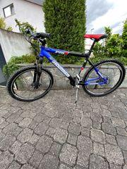 Mountainbike fast neuwertig