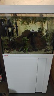 Eheim Aquarium 150 l