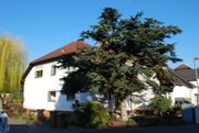 Ruhiges Wohnen 145m2 Hanau Großauheim
