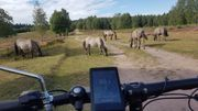 E-bike fahren Bekanntschaft Freundschaft - Suhl