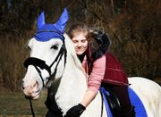 Reitbeteiligung gesucht Reiter sucht Pferd