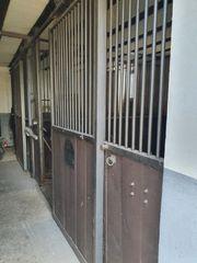 Pferdestall Boxen