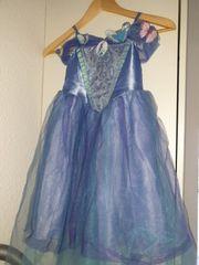 schönes cindarella Kostüm