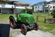 Traktor STEYR T180 Oldtimer generalüberholt