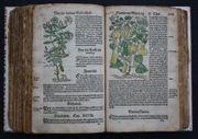 BOCK Kräuterbuch 500 kolorierte Holzschnitte