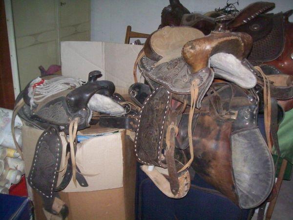 Trensen -Pony Sättel