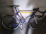 Schauff Rennrad blau gelb RH