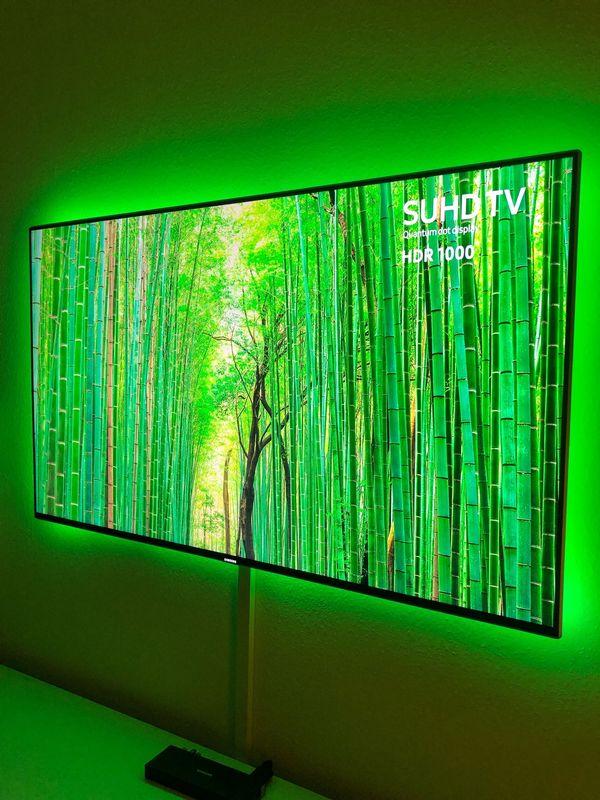 Samsung Smart TV 55 Zoll