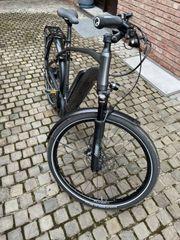 E-Bike S-Pedelec Flyer Upstreet 5 7