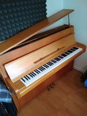 Yamaha Klavier M1