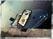 Motorboot Sportboot Trainer 40PS Mercury