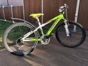 Shockblaze Mountainbike 24 Zoll