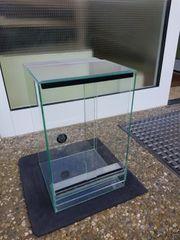 Verkaufe kleine Terrarium