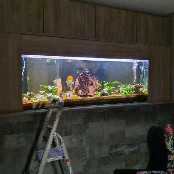 Aquariumbecken 175 x 60 x