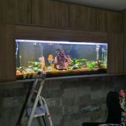 Aquariumbecken 175 x 60 x