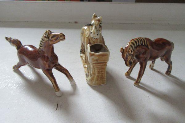 Drei Pferde suchen eine neue