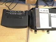 Roland AC-60 Gitarrenverstärker - sehr guter