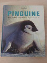 Buch Pinguine - Alles über die