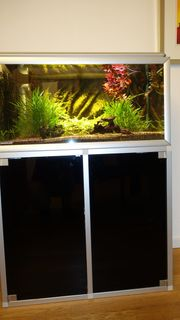 Aquarium 120 L zu verkaufen
