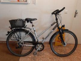 Damen Fahrräder gebraucht kaufen Laendleanzeiger.at