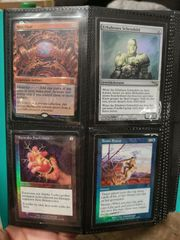 Magic The Gathering Foil Sammlung