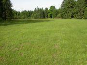 Suche Landwirtschaftliches Grundstück