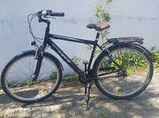 Fahrrad Cyco 7 Gänge
