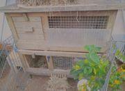 Kaninchen Kleintier Außen Stall Massiv