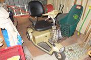 Elektroroller 3-Rad Elektromobil für Senioren