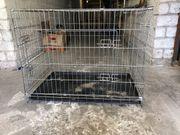 Hundegitterbox faltbar