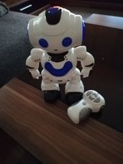 Spielzeug dance robot