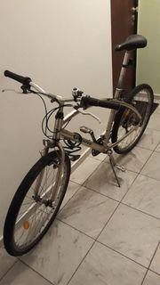 West Coast Cruiser Fahrrad 26Zoll